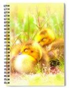 2736 - Canada Goose Spiral Notebook