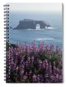 2a6101 Arched Rock And Blue Pod Lupine Ca Spiral Notebook