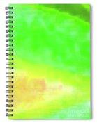 3-23-2015babcdefghijklmnopqrtuvwxyzabcd Spiral Notebook