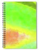 3-23-2015babcdefghijklmnopqrtuvwxyzabcdef Spiral Notebook