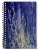 Acid Rain Spiral Notebook