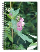 Alpine Wildflower Spiral Notebook
