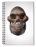 Australopithecus Skull Spiral Notebook