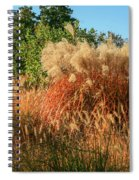 Autumn In Forest Park St Louis Missouri Spiral Notebook