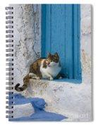 Cat In A Doorway, Greece Spiral Notebook