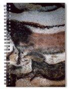 Cave Art Spiral Notebook