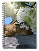 Chipmunk Chillin' On The Railin' Spiral Notebook