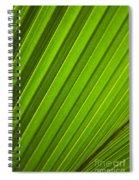 Coconut Palm Leaf Spiral Notebook