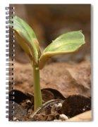 Coffee Seedling Spiral Notebook