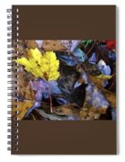 Colors Of The Fall Spiral Notebook