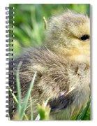 Cute Baby Goose Spiral Notebook