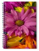 Daisies Petals Spiral Notebook
