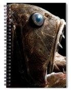 Deep Sea Fangtooth Spiral Notebook