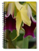 Double Orchid Spiral Notebook
