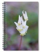 Dutchman's Breeches Spiral Notebook