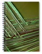 E. Coli In Culture Dish, Macro Image Spiral Notebook