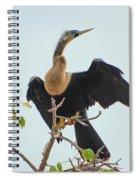 Female Anhinga Spiral Notebook