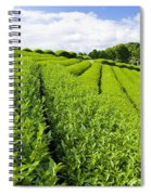 Field Spiral Notebook