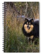 Finnish Lapphund Spiral Notebook