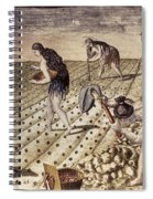 Florida Native Americans, 1591 Spiral Notebook