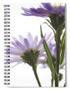 Flower Abstract Spiral Notebook