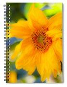 Flowering Garden.  Spiral Notebook