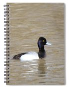 3 Greater Scaup  4060 Spiral Notebook