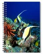 Hawaiian Reef Scene Spiral Notebook
