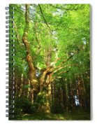 Hazelwood Co Sligo Ireland  Spiral Notebook
