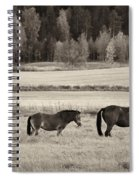Horses Of The Fall  Bw Spiral Notebook