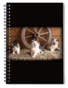 3 Little Kittens With The Wagon Wheel. Spiral Notebook