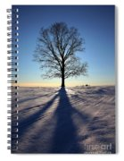 Lone Tree In Snow Spiral Notebook