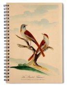 Lord's Entire New System Of Ornithology Spiral Notebook