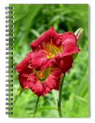Red Lily Pair Spiral Notebook