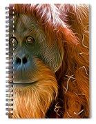 Orangutan  Spiral Notebook