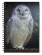 3 Owls On A Branch Spiral Notebook