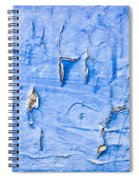 Peeling Paint Spiral Notebook