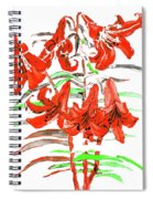 Red Lilies, Hand Drawn Painting Spiral Notebook
