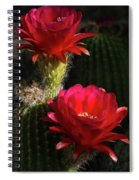 Red Torch Cactus  Spiral Notebook