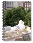 3 Seagulls In A Row Spiral Notebook