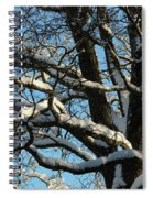 Snowy Trees Against A Blue Sky Spiral Notebook