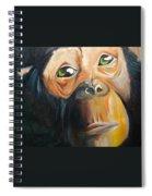 Soul Of A Monkey Spiral Notebook