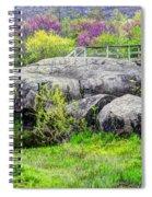 Spring At Devils Den Spiral Notebook