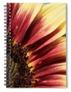 Sunflower Named Ruby Eclipse Spiral Notebook