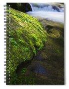 Sweet Creek Oregon 12 Spiral Notebook