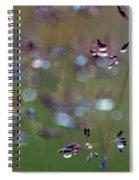 Tall Grass Stem Close-up Spiral Notebook