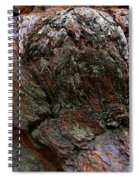 Textures On A Giant Sequoia Spiral Notebook