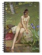 The Little Shepherdess Spiral Notebook