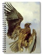 The Wounded Eagle Spiral Notebook