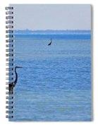 3 Times Spiral Notebook